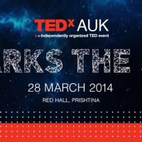 Trio @ TEDxAUK  28/03/2014