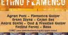 Ethno Flamenco Concert for little Nisa