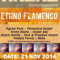 Ethno Flamenco Concert for little Nisa